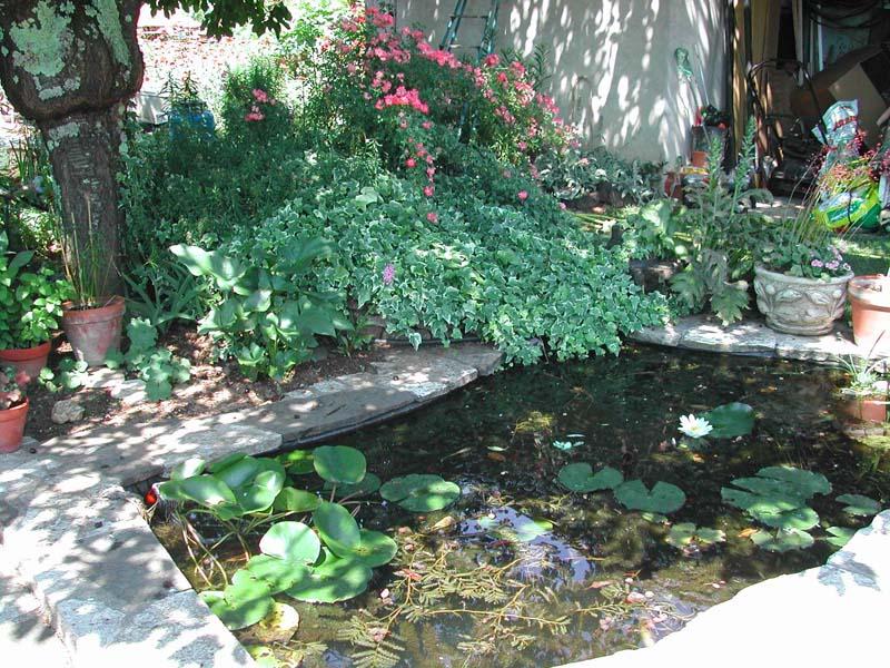 Tout pour l'aménagement et l'entretien de votre bassin de jardin